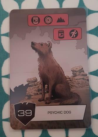 Psychic Dog
